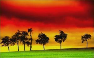 Gambar reggae ~ Kuwarasanku.jpg (2)